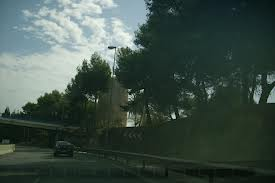 rio_real_marbella